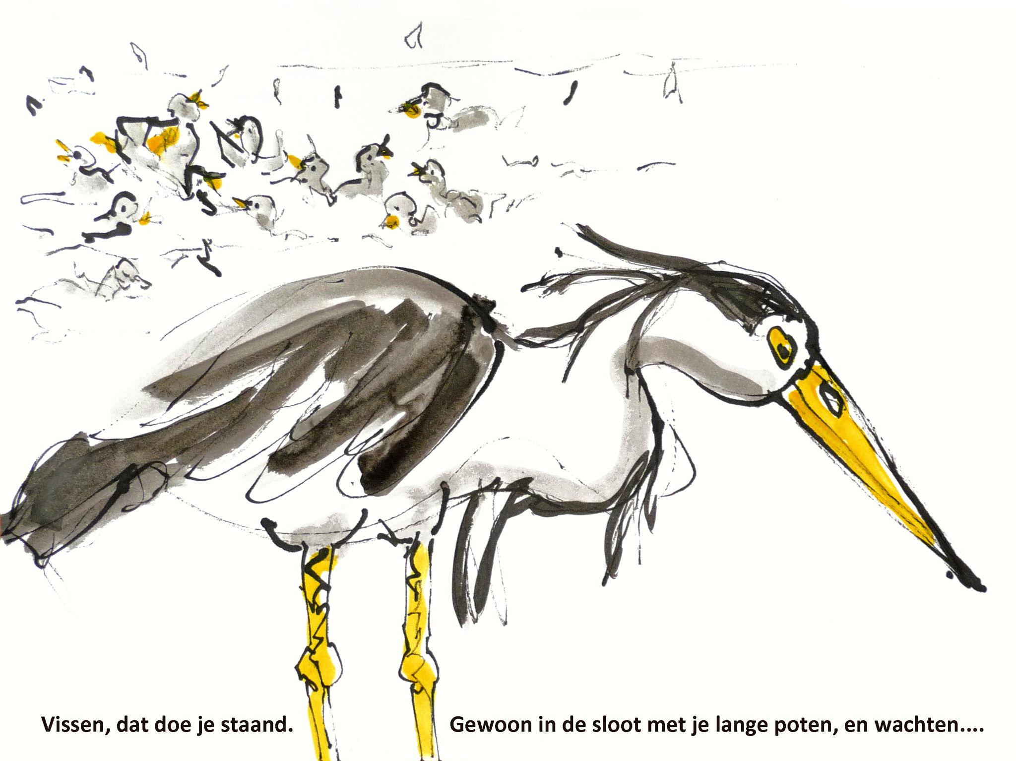 Reiger Jessy wacht op vis - verhaal voor kinderen door Fons Heijnsbroek - illustaties, Wendy Tjalma