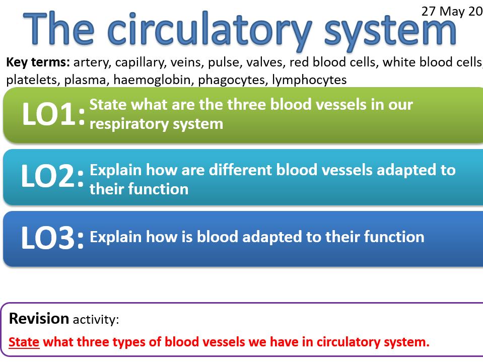 EDEXCEL CB8b The circulatory system