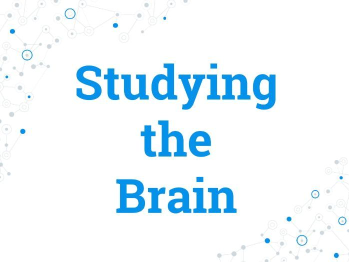 Methods of Studying the Brain - Psychology - Flipped Learning