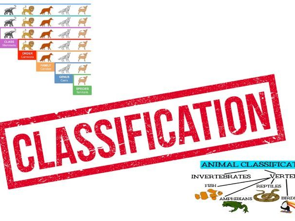 4.2 Classification OCR A-level biology A resources