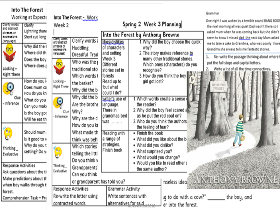 Guided Reading Bundle Year 2 Planning