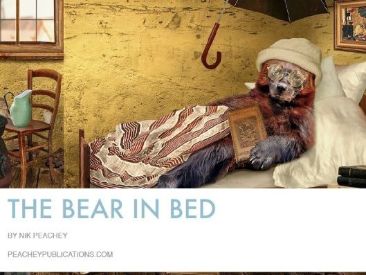 The Bear in Bed - Image Based Lesson Plan
