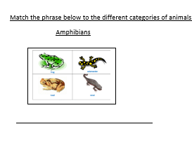 Grouping animals into different categories