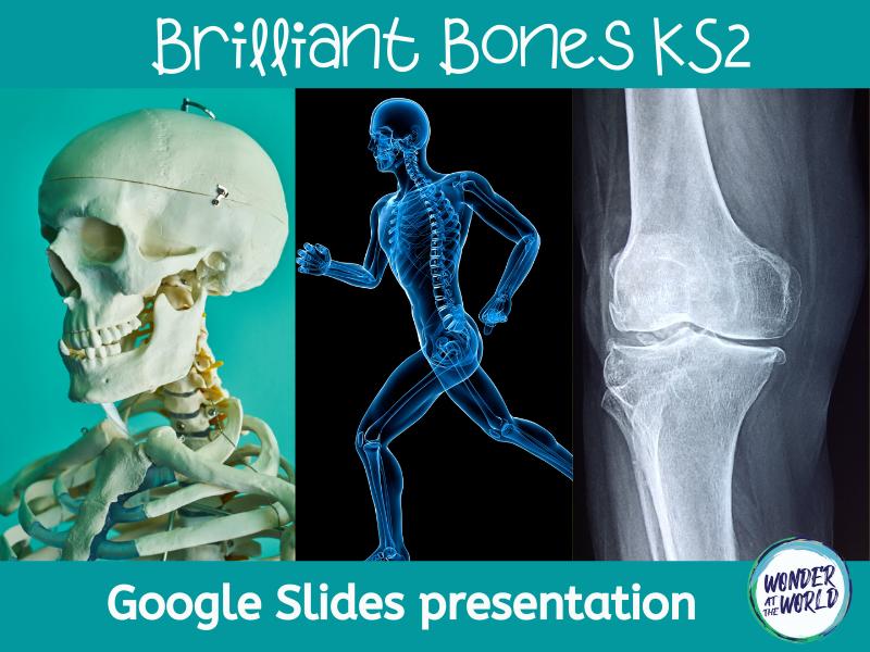 Brilliant Bones: an introduction to skeletons Google Slides presentation KS2
