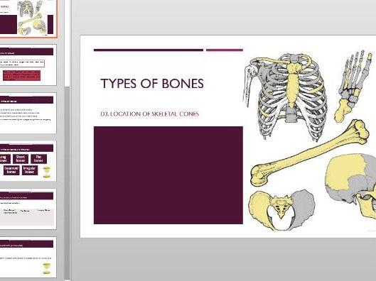 Types of bone presentation