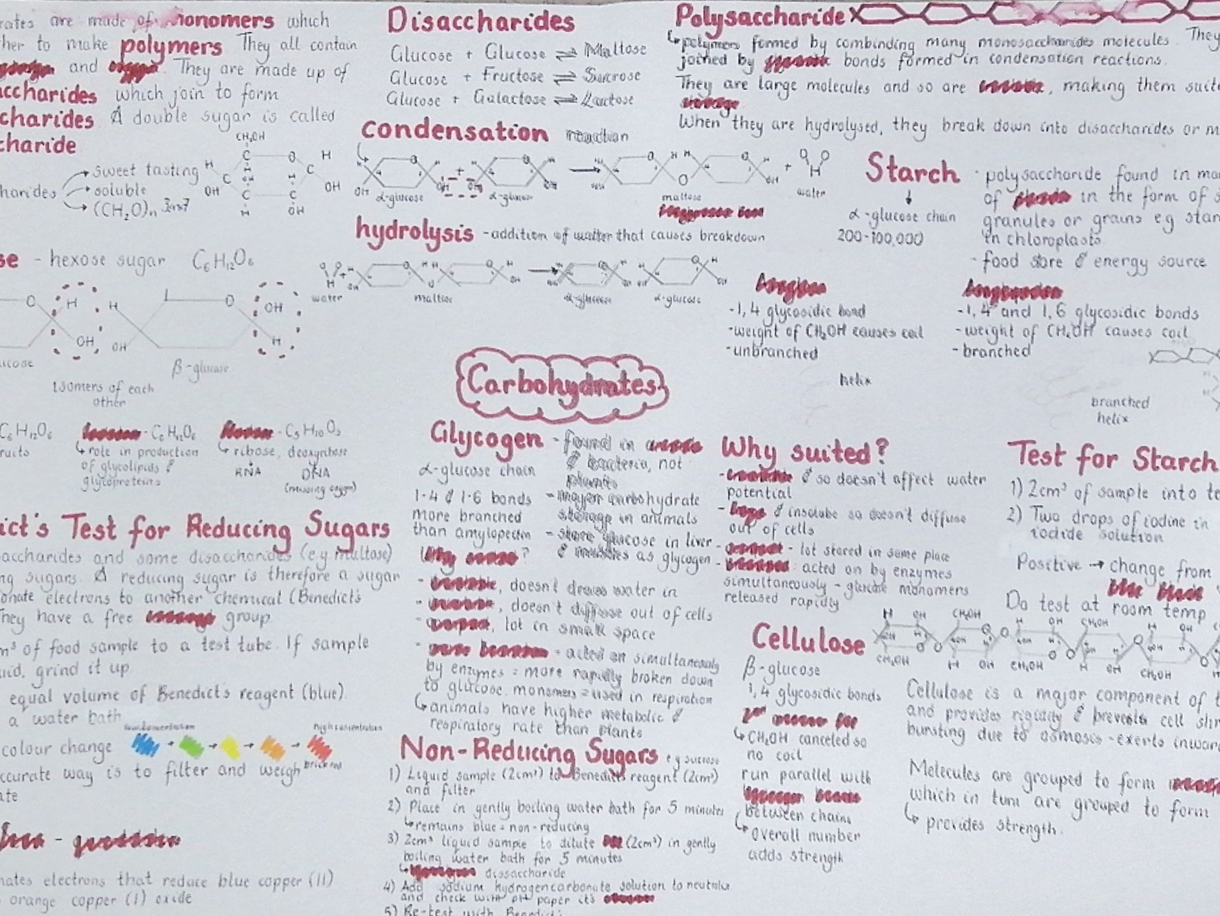 Revision posters for Biology AQA ALevel