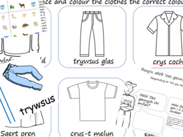 Welsh Numbers, Clothes and Pets Learning Welsh Activity KS1/2