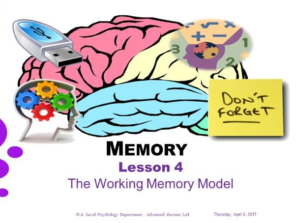 Powerpoint - Memory - Lesson 4 - The Working Memory Model