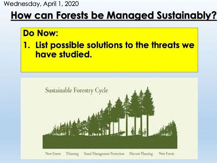 KS3 Forest Under Threat (Edexcel 9-1 B) 5- Forest Management