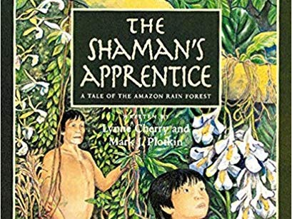 Year 5 Reading plan The Shaman's Apprentice Smart Notebooks and Word plans