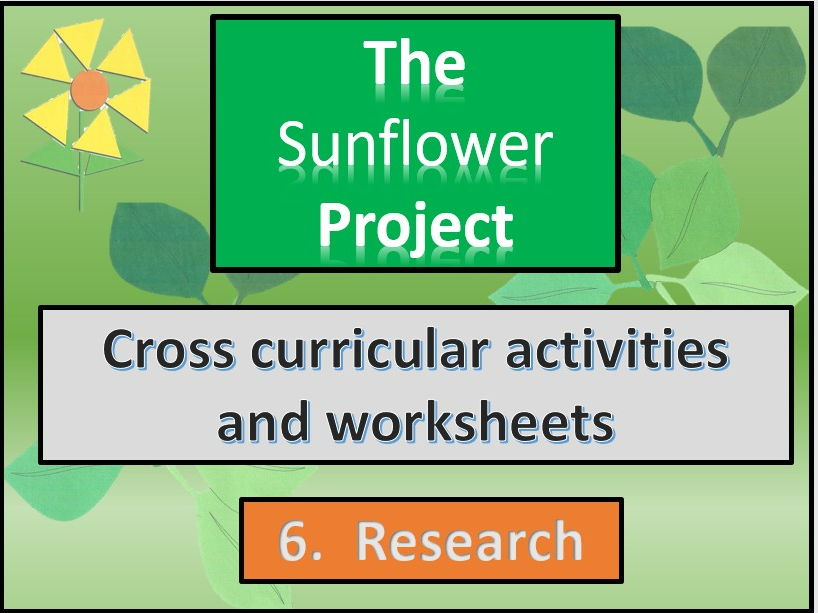 The sunflower project. Researching sunflowers  . Cross curricular. Section 6.