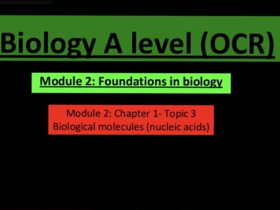 A Level biology nucleic acids lesson