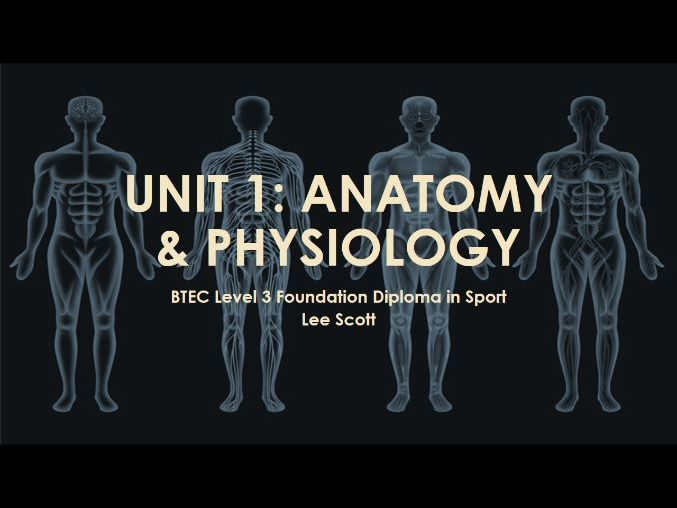 Unit 1 - Anatomy & physiology (BTEC  Level 3 Sport)
