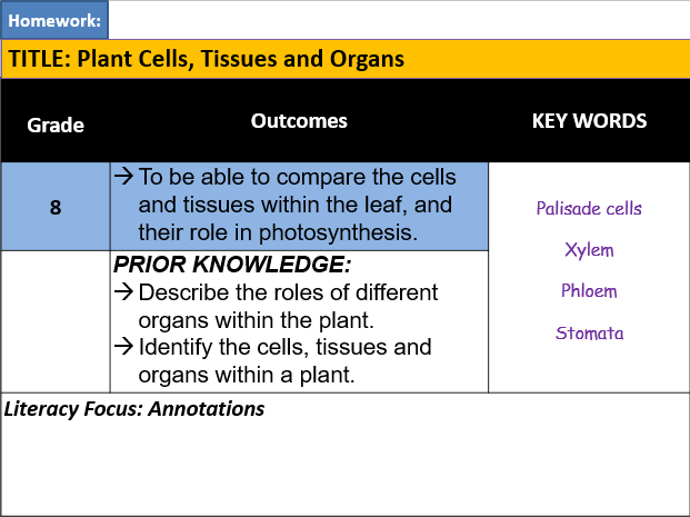 B4.6 Tissues and Organs in Plants