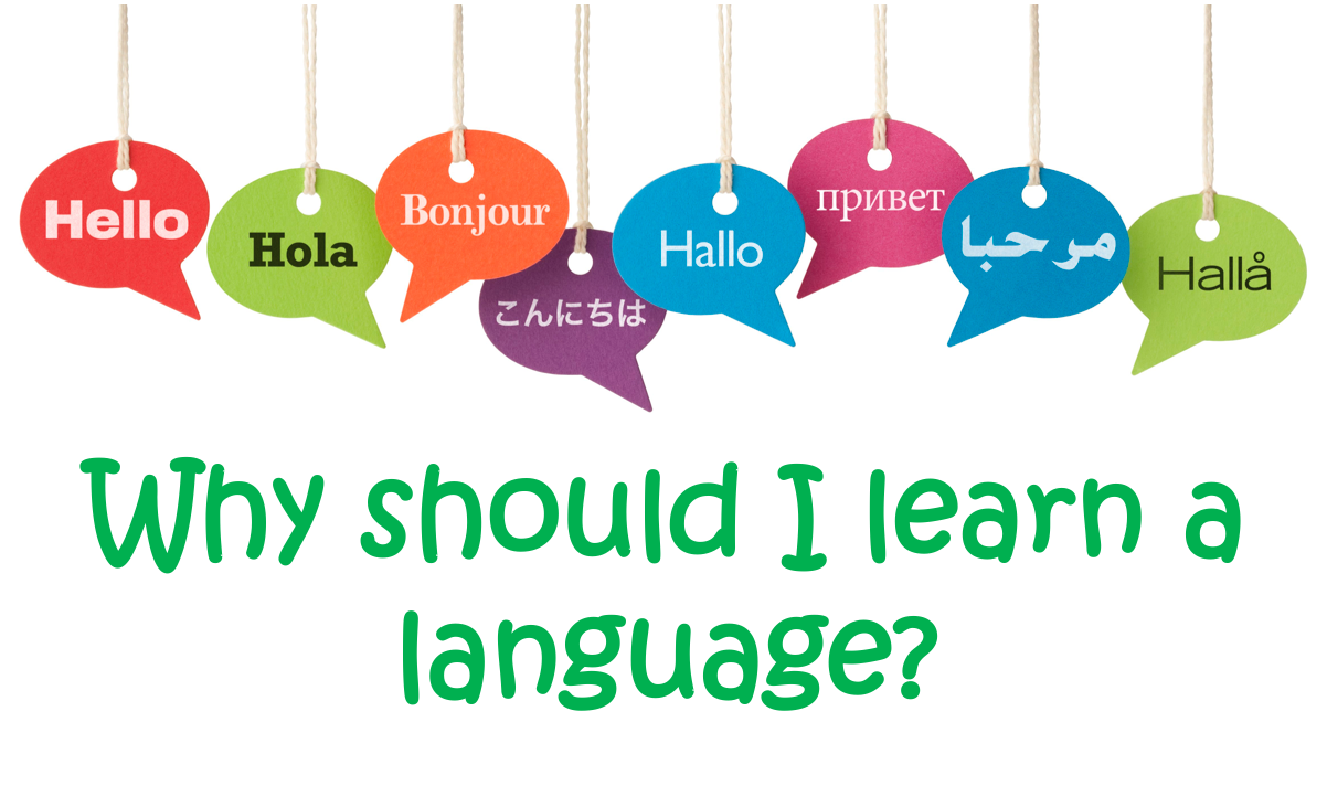 Language Motivation - Reasons to learn a language - French and Spanish and MFL in general - BUNDLE