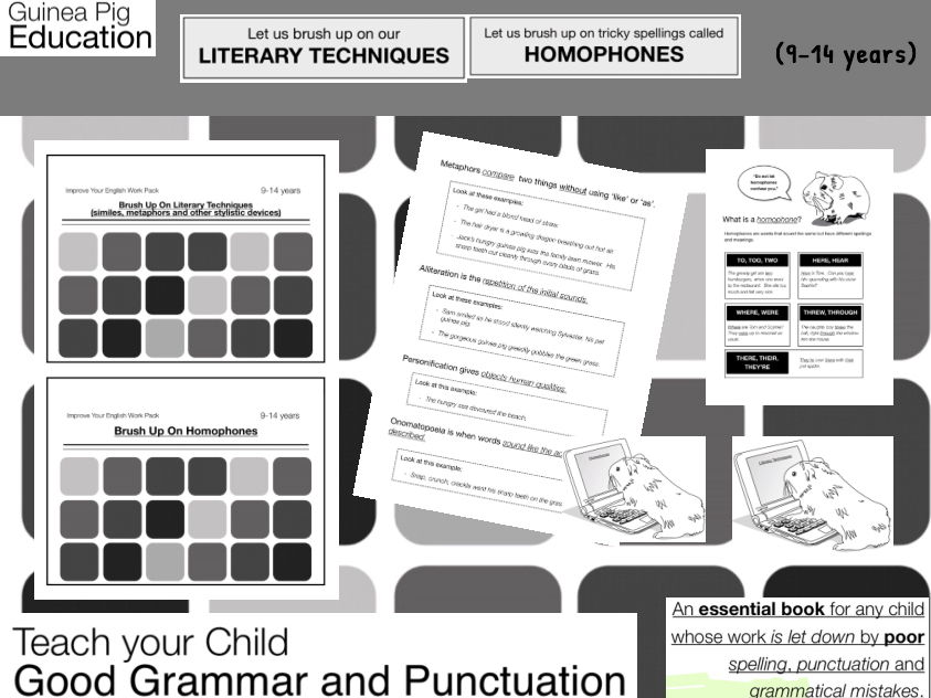 Brush Up On Literary Techniques and Homophones (9-14 years)