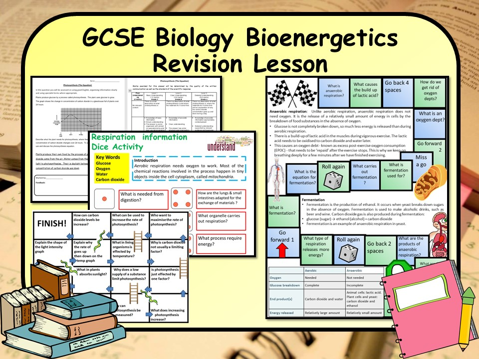 New AQA 1-9 GCSE Biology (Science) Bioenergetics Revision Lesson