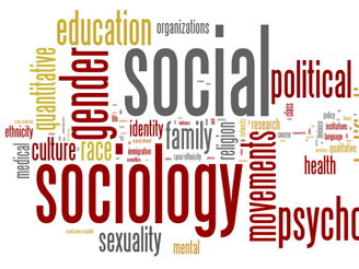 Sociology (A Level or Level 3 equivalent) Crime, Health and Research Methods