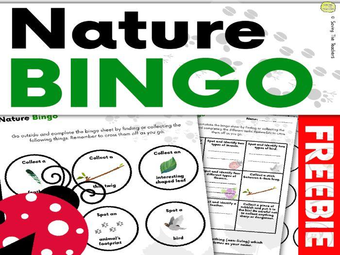 Nature Bingo – Beach And Woodland