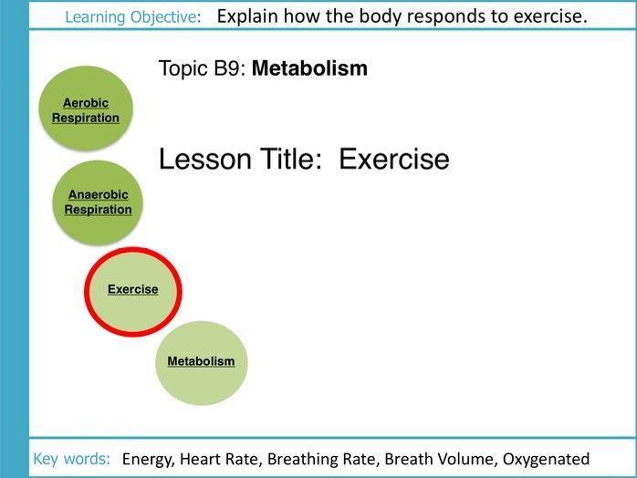 AQA GCSE: B9 Respiration: L3 Exercise