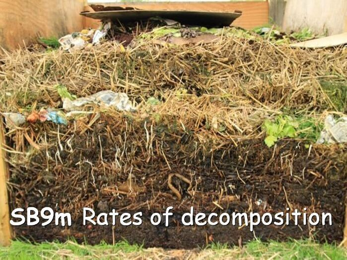Edexcel SB9m Rates of Decomposition