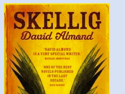 'Skellig' - David Almond -Lesson 40 - Blurb - Year 6 or lower KS3