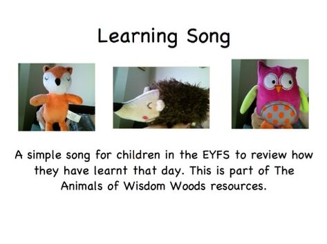 Characteristics of Effective Learning Song - The Animals of Wisdom Woods