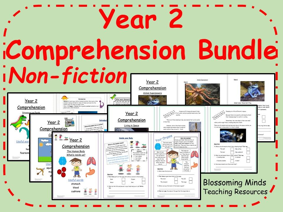 Year 2 Reading Comprehension Pack