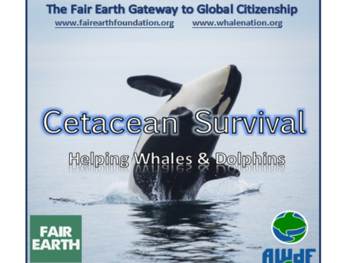 Whale & Dolphin Conservation - Fair Earth Resources