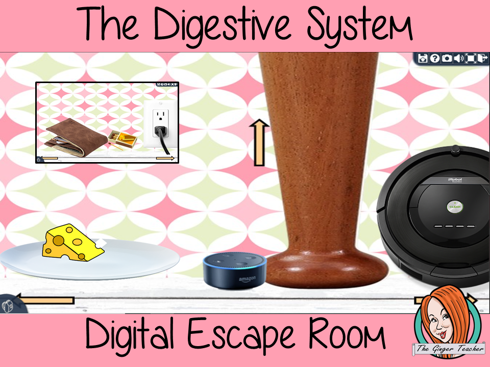 The Digestive System Science Escape Room