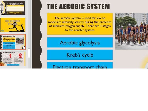 Energy systems, Energy for exercise, A level PE