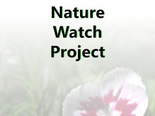 Nature Watch Project Book