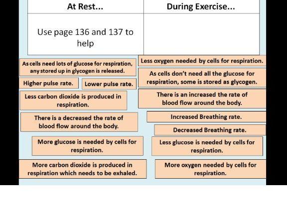 Response to Exercise