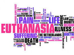 Presentation on Euthanasia (A Level WJEC/Eduqas Religious Studies)