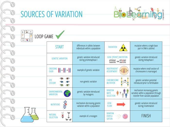 Sources of Variation - Loop Game (KS5)