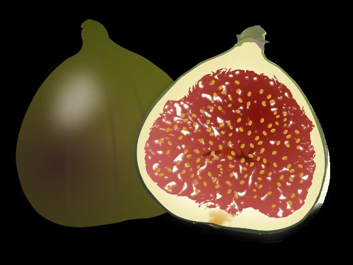 Fruits - A Printable Worksheet