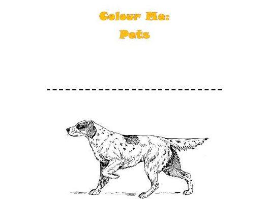 Colour Me: Pets