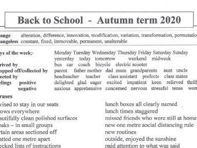 Back to School    Autumn Term 2020
