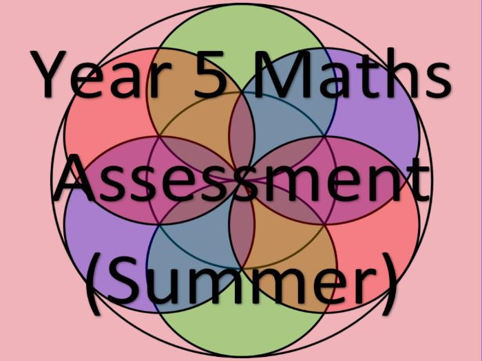 Year 5 Maths Assessment and Tracking (SUMMER)