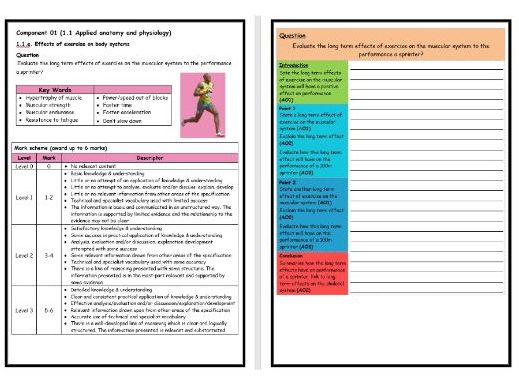 GCSE PE - OCR (9-1) - Structure Strip - Long Term Effects on Muscular System - Extended Question