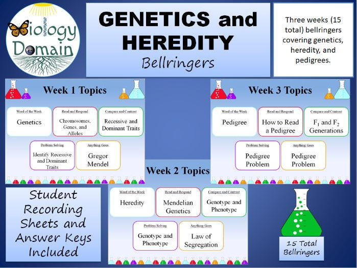 Three weeks of Genetics and Heredity Bellringers Warm Ups with Answer Key