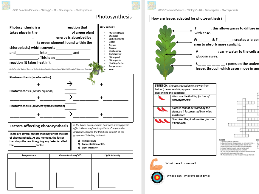 Photosynthesis GCSE Classroom/Revision Worksheet