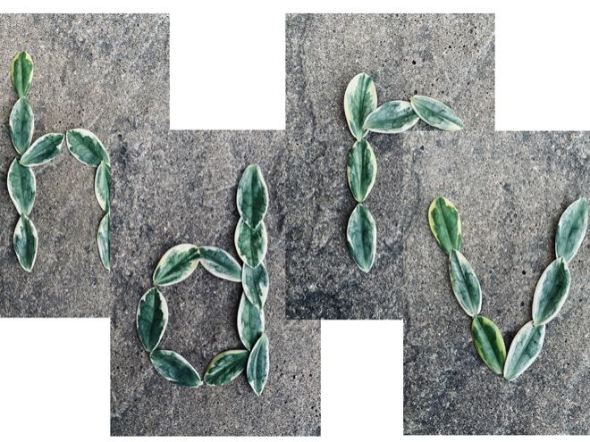 Full set lowercase leaf alphabet