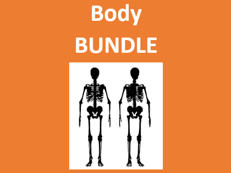 Body in English Bundle