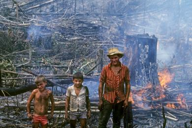Users of the Amazon rainforest and their perspectives