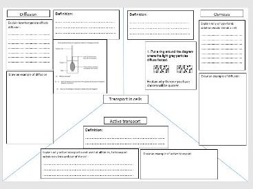 Transport across membranes revision sheet