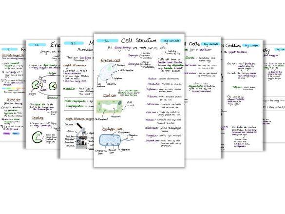 GCSE Biology Key Concepts Notes