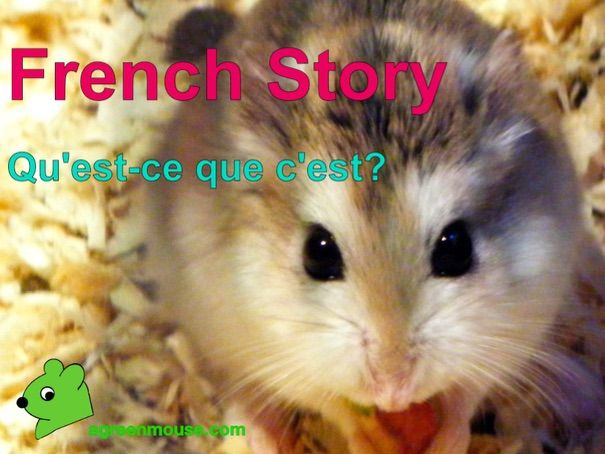 French Story about Hamsters - Video + Worksheets