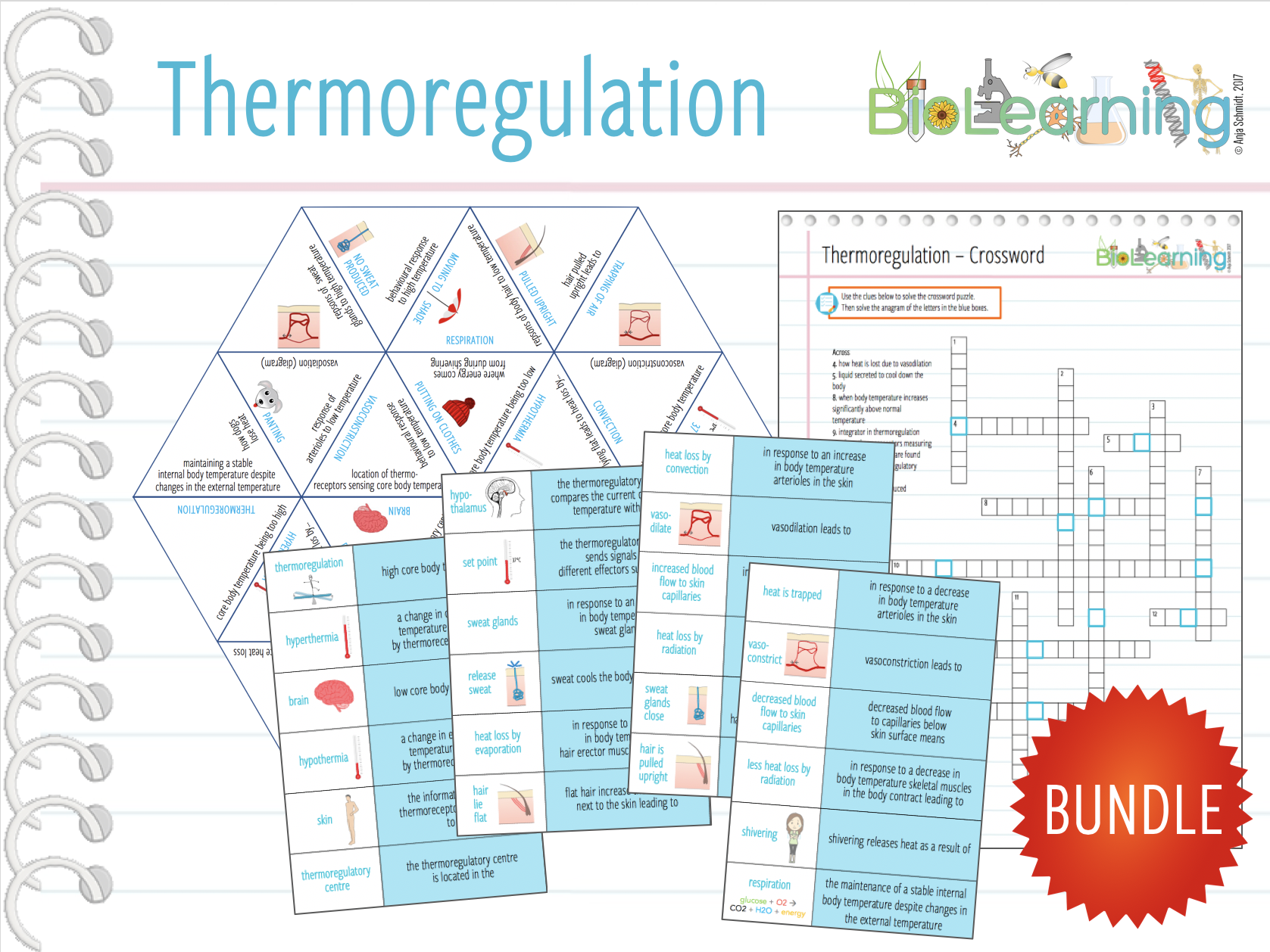 Thermoregulation - 4x Games and Activities (KS4/5)