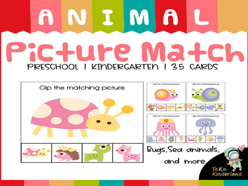 Animal Matching Clip Cards Preschool Kindergarten | TeKa Kinderland